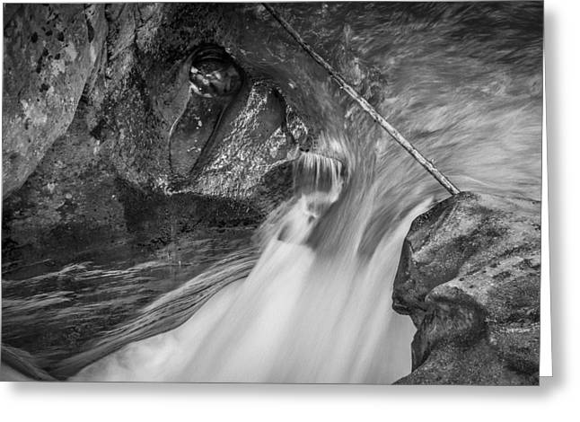 Clean Water Greeting Cards - Avalanche Gorge Glacier National Park BW Greeting Card by Rich Franco
