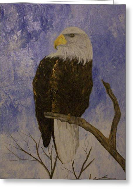 Eagle Reliefs Greeting Cards - Bald Eagle Greeting Card by Roy Penny