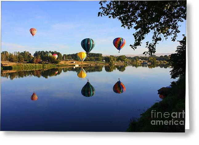 Yakima Valley Greeting Cards - Balloons Heading East Greeting Card by Carol Groenen