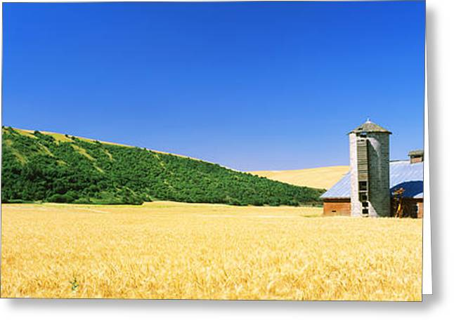 Agricultural Building Greeting Cards - Barn In A Wheat Field, Washington Greeting Card by Panoramic Images