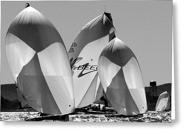 Penn Cove Greeting Cards - Bay Classics Greeting Card by Steven Lapkin