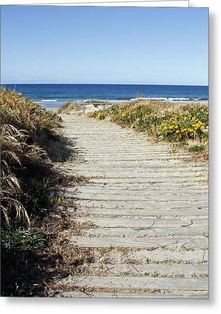 Beach Scenery Greeting Cards - Beach trail Greeting Card by Les Cunliffe