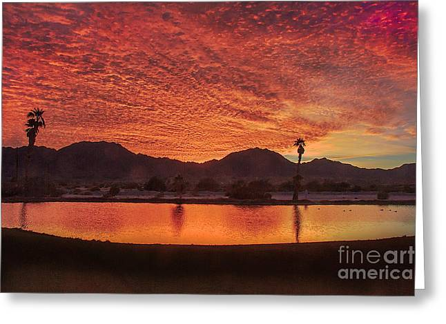 Beautiful Southwest Sunrise Greeting Card by Robert Bales