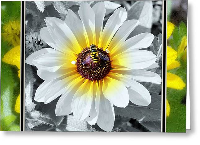 Matting Greeting Cards - Bee Mine Greeting Card by Charles Feagans