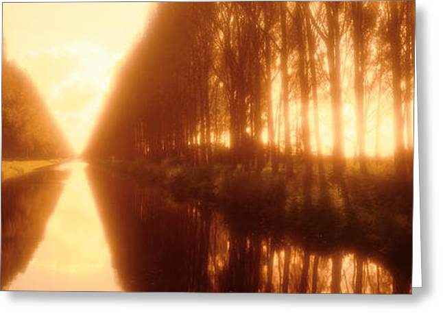 Tree Lines Greeting Cards - Belgium, Tree Lined Waterway Greeting Card by Panoramic Images