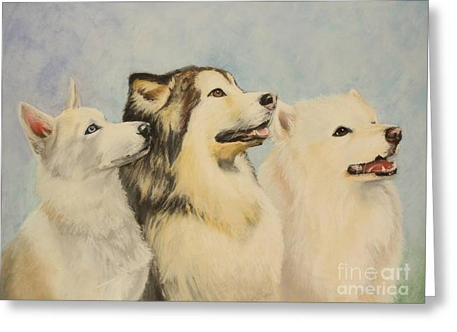 Alaskan Samoyed Greeting Cards - Best Friends Greeting Card by Janae Lehto