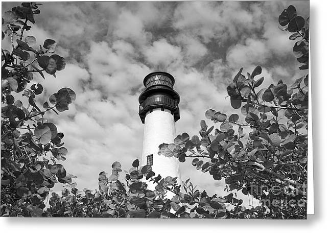 Bill Baggs Greeting Cards - Bill Baggs Lighthouse Greeting Card by Eyzen M Kim