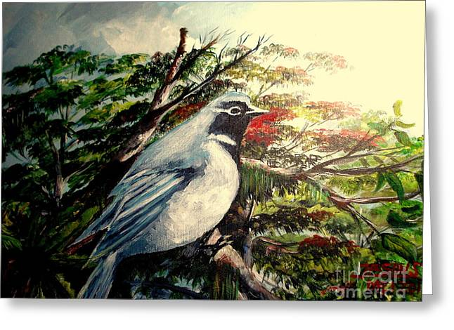 Mangrove Forest Paintings Greeting Cards - Black-throated Robin  Greeting Card by Jason Sentuf
