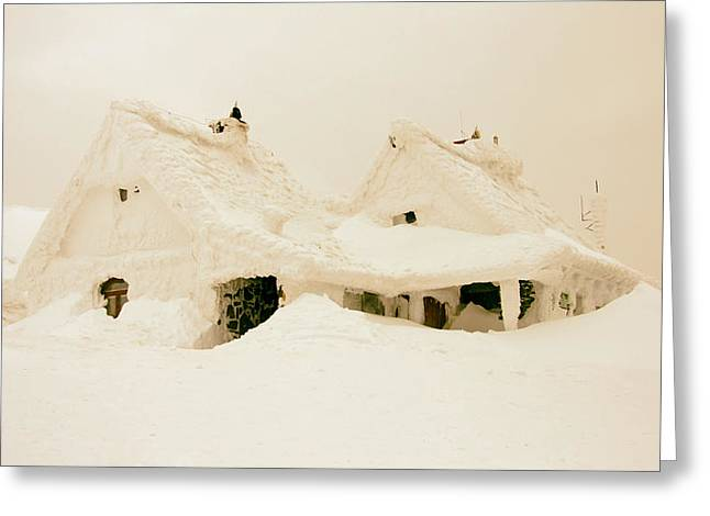Snow-covered Landscape Greeting Cards - Blizzard Greeting Card by Biegun Wschodini