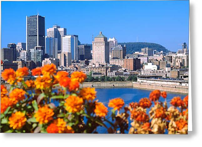 Lawrence Images Greeting Cards - Blooming Flowers With City Skyline Greeting Card by Panoramic Images