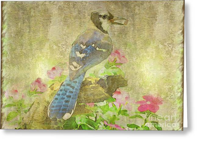 Wall Art Bird Wall Are Greeting Cards - Blue Jay with Texture Greeting Card by Debbie Portwood