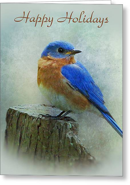 Indiana Christmas Greeting Cards - Bluebird Holiday Card Greeting Card by Sandy Keeton