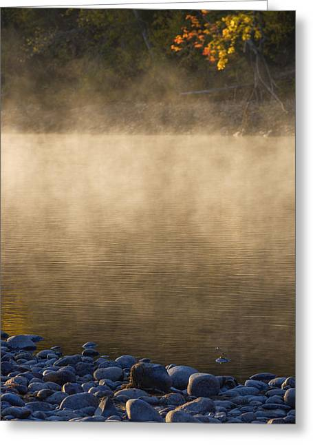 Fog Rising Greeting Cards - Boise River Autumn morning Greeting Card by Vishwanath Bhat