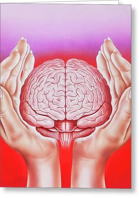 Brain Protection Greeting Card by John Bavosi