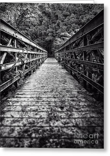 Leading Lines Greeting Cards - Bridge leading into the bamboo jungle Greeting Card by Edward Fielding