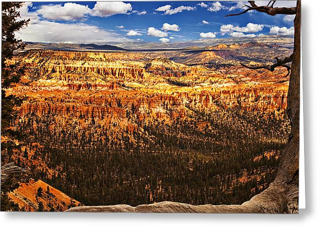 National Photographs Greeting Cards - Bryce Canyon Greeting Card by Andrew Soundarajan