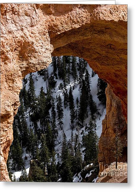 Photographic Art For Sale Greeting Cards - Bryce Canyon National Park Greeting Card by Richard Smukler