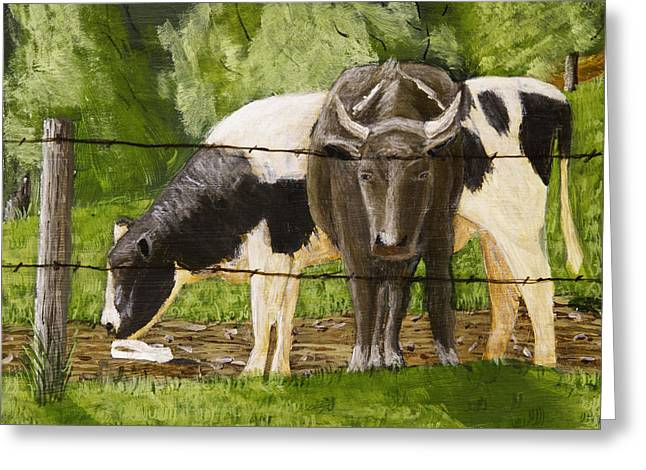 Maine Farms Paintings Greeting Cards - Bull And Cow Spring Farm Field  Greeting Card by Keith Webber Jr