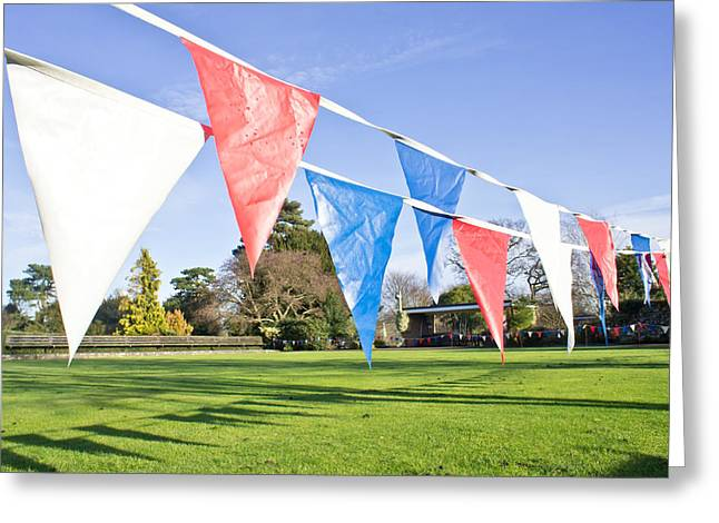 Flaps Greeting Cards - Bunting Greeting Card by Tom Gowanlock