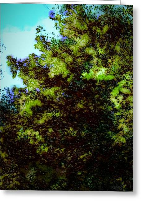 Fall Photos Paintings Greeting Cards - Bushes Greeting Card by Michael James Greene
