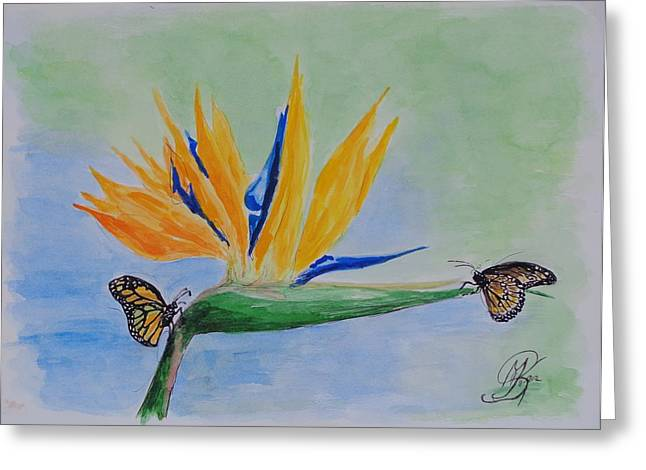 Strelitzia Paintings Greeting Cards - 2 butterflies on a Bird of Paradise Greeting Card by Kerstin Berthold