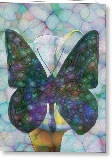 Warp Greeting Cards - Butterfly Greeting Card by Jack Zulli