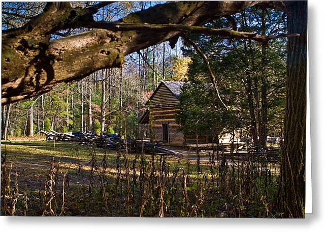 Tennessee Farm Greeting Cards - Cades Cove Cabin  Greeting Card by Douglas Barnett