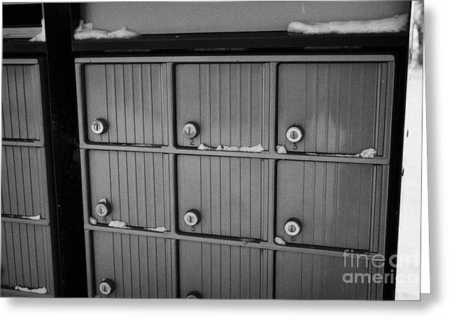 Harsh Conditions Greeting Cards - canada post post mailboxes in rural small town Forget Saskatchewan Canada Greeting Card by Joe Fox