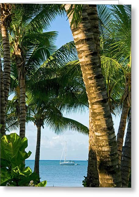 Carlisle Bay Beach, Antigua, West Greeting Card by Nico Tondini