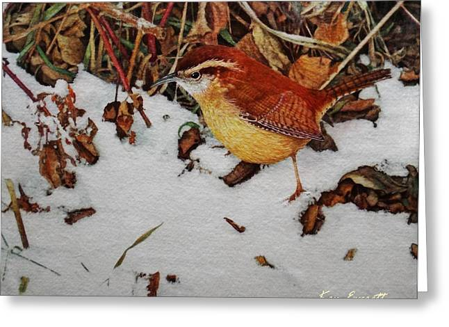 Carolina Paintings Greeting Cards - Carolina Wren Greeting Card by Ken Everett