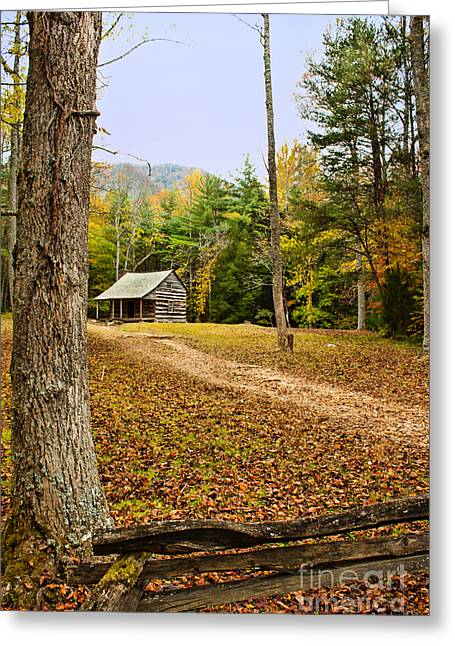 Carter Photographs Greeting Cards - Carter Shields Cabin Greeting Card by Lena Auxier