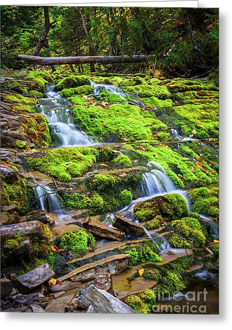Stones Greeting Cards - Cascading waterfall Greeting Card by Elena Elisseeva