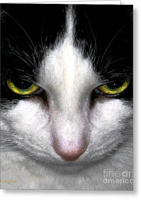 Photo Of Cat Greeting Cards - Casey Greeting Card by Dale   Ford