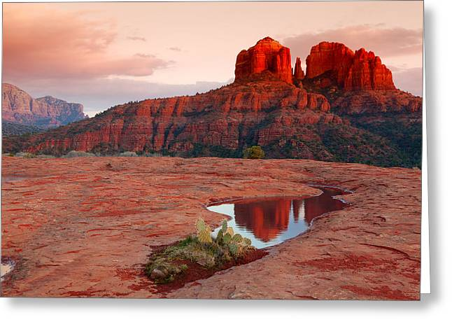 Cathedral Rock Greeting Cards - Cathedral Rock Reflection Greeting Card by Alexey Stiop