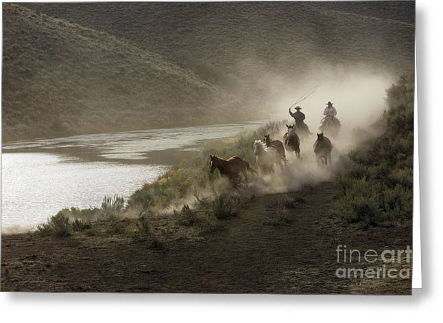 Quarter Horse Greeting Cards - Cattlemen Herding Quarter Or Paint Greeting Card by M. Watson