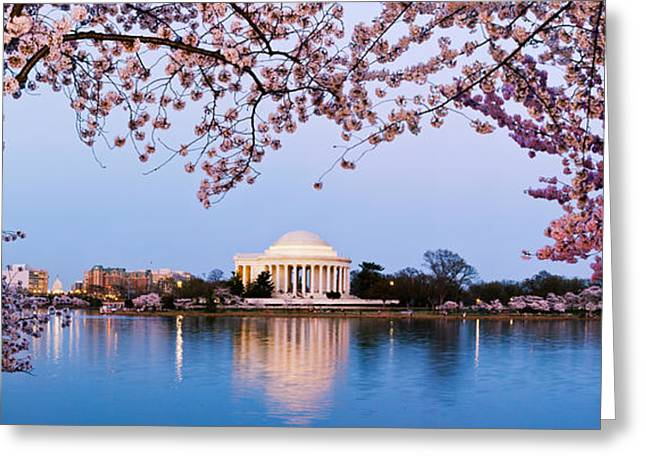 Jefferson Memorial Greeting Cards - Cherry Blossom Tree With A Memorial Greeting Card by Panoramic Images
