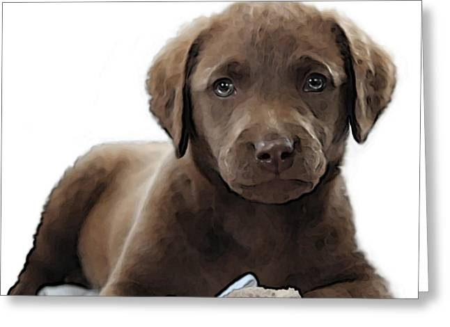Recently Sold -  - Puppy Digital Art Greeting Cards - Chessie Greeting Card by William Love