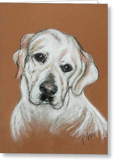 Labradors Pastels Greeting Cards - Chloe Greeting Card by Cori Solomon