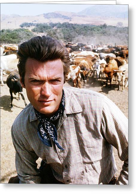 Rawhide Greeting Cards - Clint Eastwood in Rawhide  Greeting Card by Silver Screen