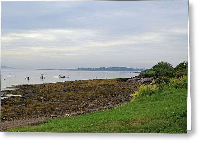 Coastal Maine Greeting Card by Becca Brann