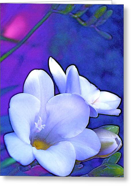 Color 4 Greeting Card by Pamela Cooper