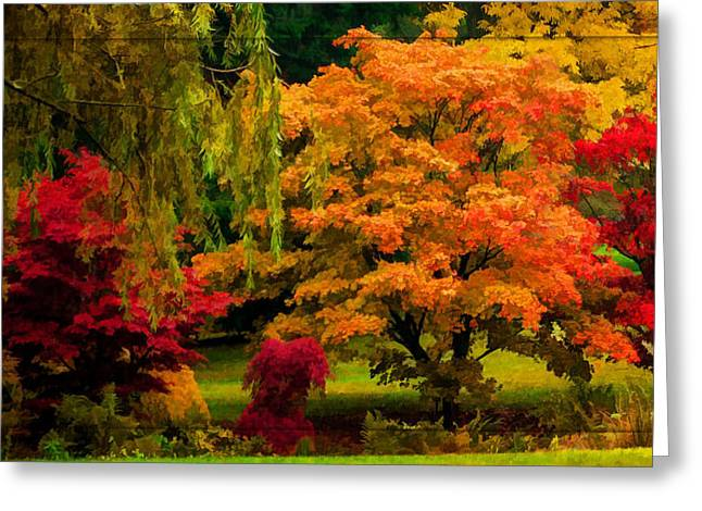 Western Canada Landscape Art Greeting Cards - Colors Of Autumn Greeting Card by Jordan Blackstone