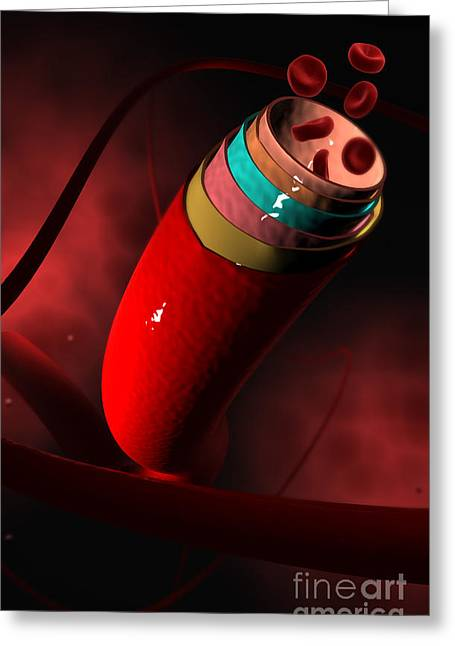 Red Blood Greeting Cards - Conceptual Image Of A Blood Vessel Greeting Card by Stocktrek Images