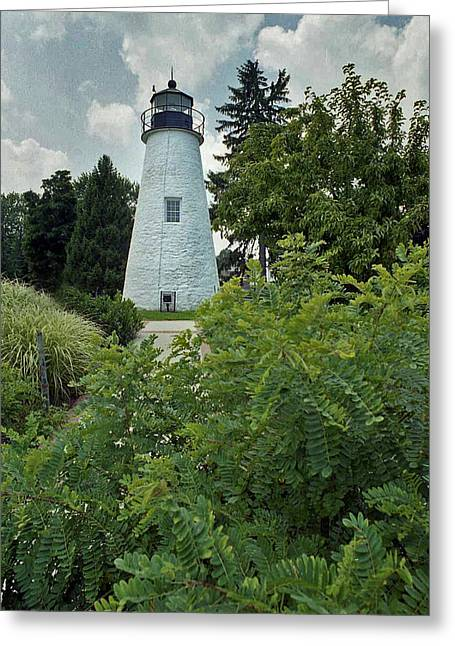 Best Sellers -  - Concord Greeting Cards - Concord Point Lighthouse Greeting Card by Skip Willits