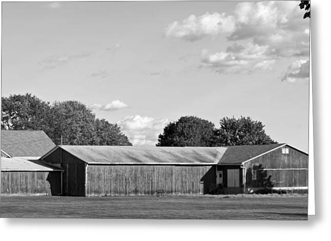 Barn Lots Greeting Cards - Connecticut Tobacco Barns Greeting Card by Mountain Dreams