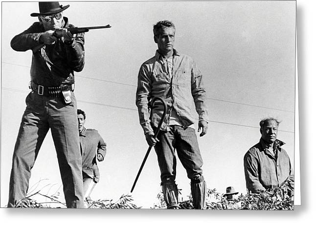 Cool Photographs Greeting Cards - Cool Hand Luke  Greeting Card by Silver Screen