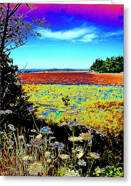 Seacape Digital Art Greeting Cards - Coos Bay Wild Flowers Greeting Card by Joseph Coulombe