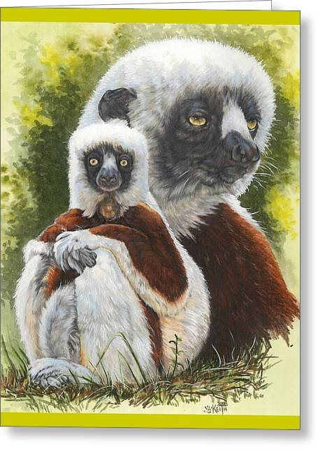 Madagascar Drawings Greeting Cards - Coquette Greeting Card by Barbara Keith