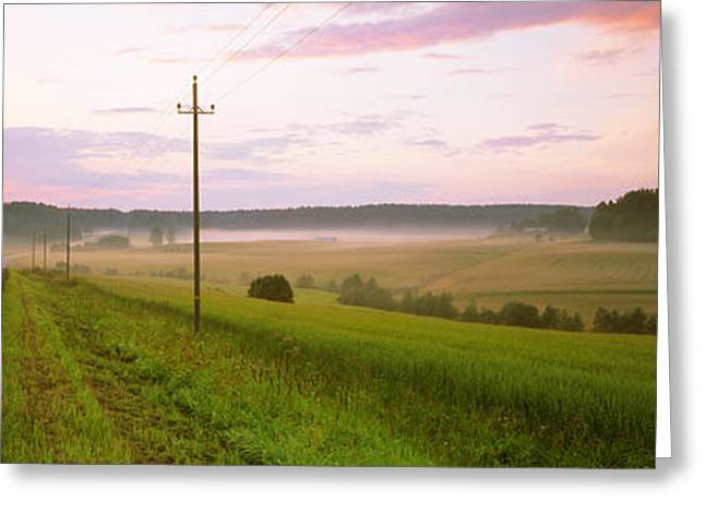 Telephone Poles Greeting Cards - Country Road Passing Through A Field Greeting Card by Panoramic Images