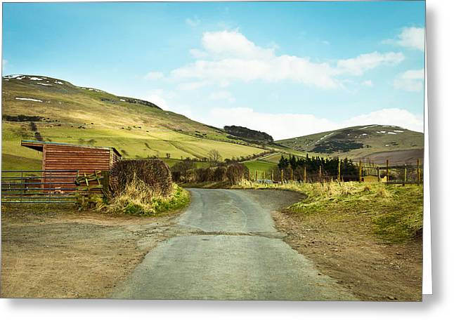 Country Track Greeting Card by Tom Gowanlock